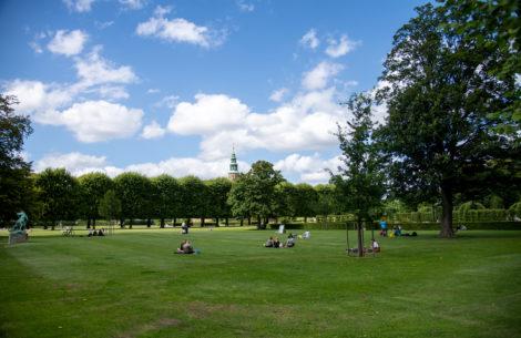 Disse parker må du grille i