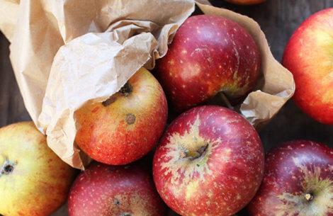 Mine to yndlings æbleopskrifter