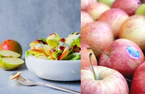 5 grunde til at spise dit daglige æble