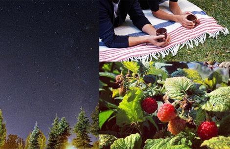 25 billige date-idéer til jeres sommer sammen
