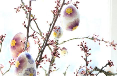 Julie Wettergren: DIY påskeæg med pressede blomster