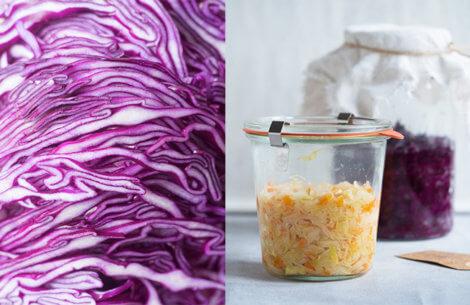 Fermentering forever: Til dig som elsker kål