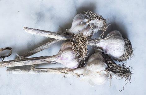 8 gode grunde til at spise hvidløg