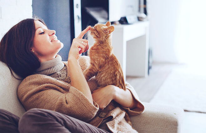 5 fordele ved at have et kæledyr