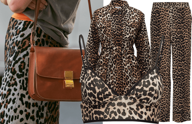 6 leopard-print musthaves
