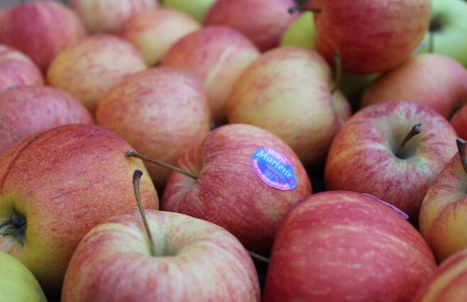 3 æbleopskrifter du må prøve!