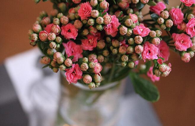 Friske blomster i op til 5 uger?