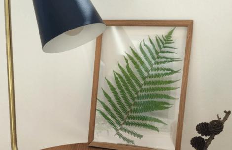 DIY: Pressede blomster på væggene